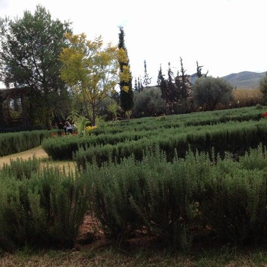 Photos At Jardin Bio Aromatique D Ourika Garden