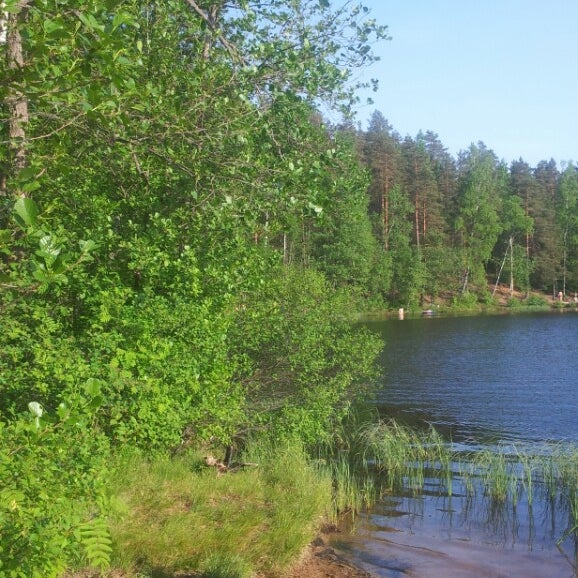 озеро дружинное фото кума