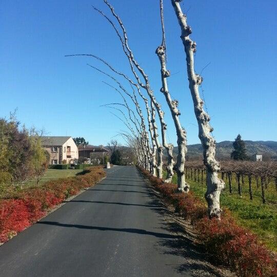 Foto scattata a Peju Province Winery da Andy B. il 1/20/2013