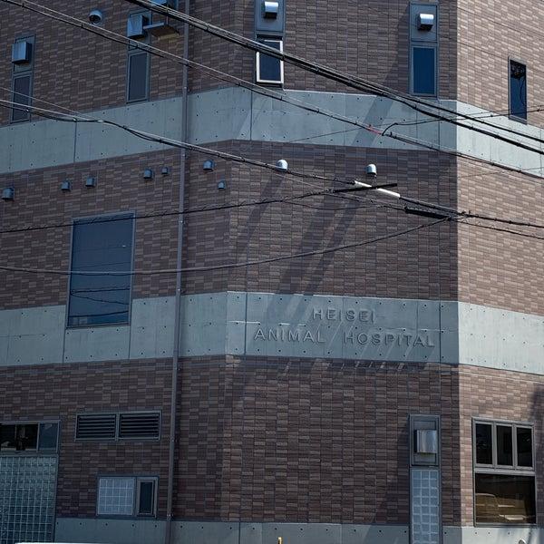 動物 病院 平成