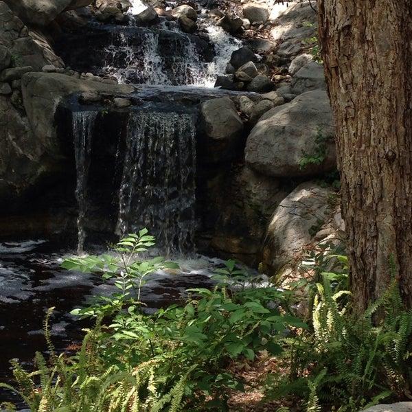 5/23/2014 tarihinde Robin P.ziyaretçi tarafından Descanso Gardens'de çekilen fotoğraf