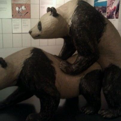 1/12/2012에 Samantha N.님이 Museum of Sex에서 찍은 사진