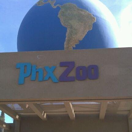 Снимок сделан в Phoenix Zoo пользователем Megan E. 1/10/2012