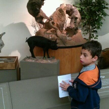 Foto tirada no(a) Las Vegas Natural History Museum por Connor K. em 2/26/2012