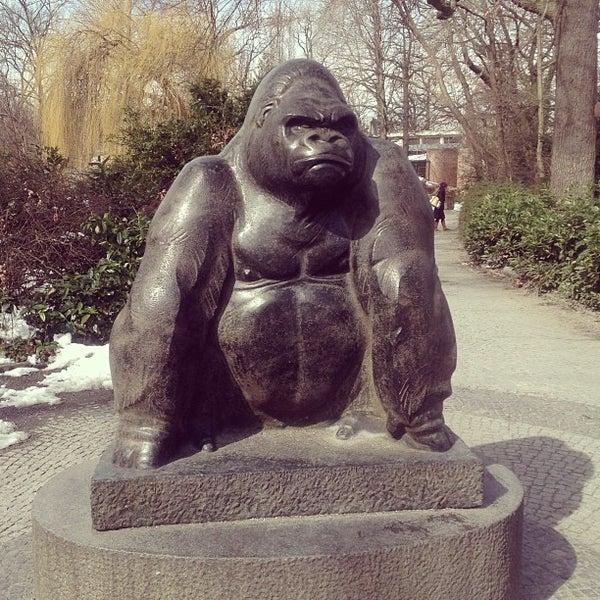 3/27/2013에 Алла М.님이 Zoologischer Garten Berlin에서 찍은 사진