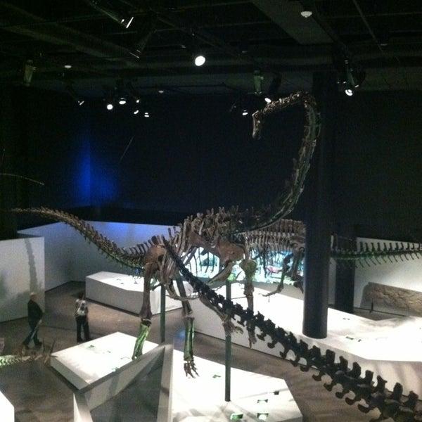 Foto scattata a Houston Museum of Natural Science da Aly B. il 2/10/2013