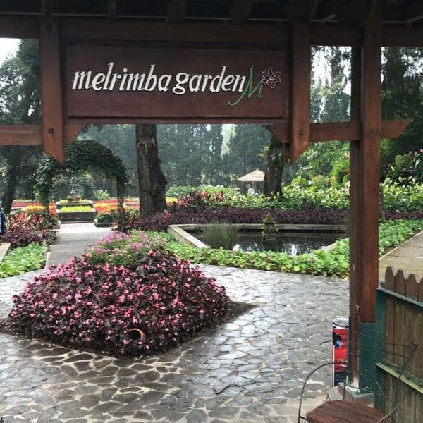 Foto Di Melrimba Garden 33 Consigli Da 2264 Visitatori