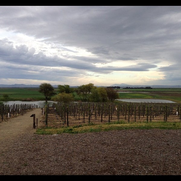 Foto tomada en Ram's Gate Winery  por Chris T. el 3/31/2013