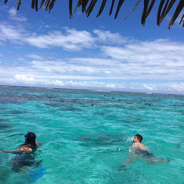 Cook Islands Rarotonga Beach: Captain Tama's Lagoon Cruizes, Rarotonga, Cook Islands
