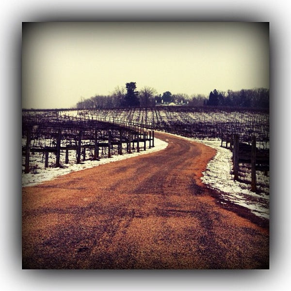 1/26/2013 tarihinde DizzyTaco™ziyaretçi tarafından Keswick Vineyards'de çekilen fotoğraf