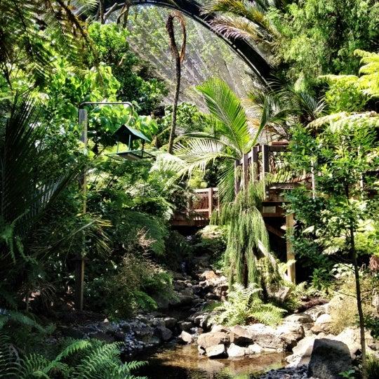 12/9/2012 tarihinde Mario M.ziyaretçi tarafından Auckland Zoo'de çekilen fotoğraf