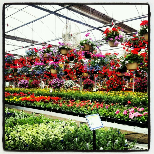 Photos at Ebert's Greenhouse - Flower Shop in Ixonia