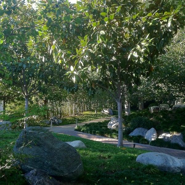 11/9/2013にCherry T.がJapanese Friendship Gardenで撮った写真