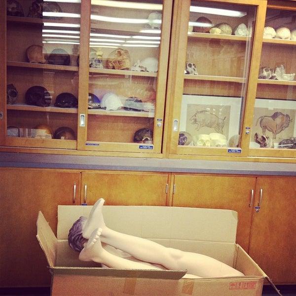 Das Foto wurde bei University of Pennsylvania Museum of Archaeology and Anthropology von Alice L. am 12/13/2012 aufgenommen