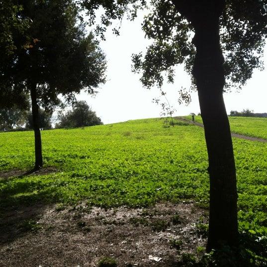 12/2/2012にEmanuele C.がParco Regionale dell'Appia Anticaで撮った写真