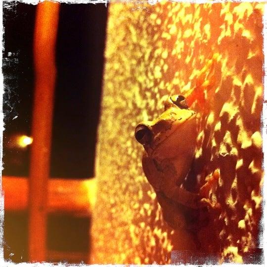 6/2/2011にBrandy G.がJashita Tulumで撮った写真