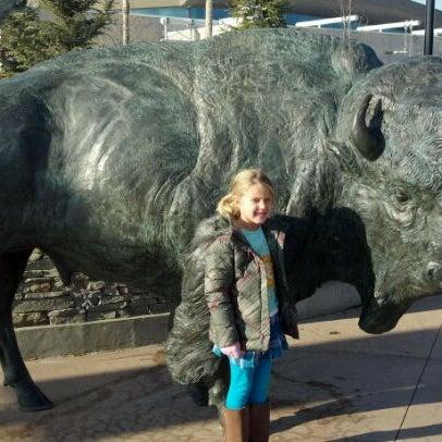 11/20/2011 tarihinde Jeff T.ziyaretçi tarafından Minnesota Zoo'de çekilen fotoğraf