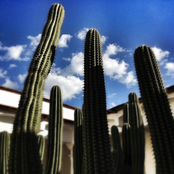 1/26/2013에 Waldini O.님이 Museo de Filatelia de Oaxaca (MUFI)에서 찍은 사진