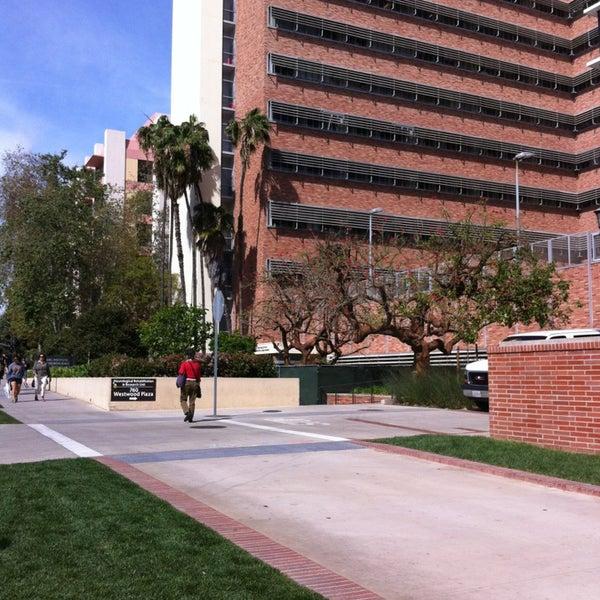 Photos at UCLA Semel Institute For Neuroscience - College