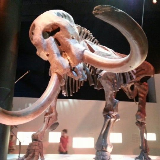 Foto scattata a Houston Museum of Natural Science da Eduardo E. il 2/8/2013