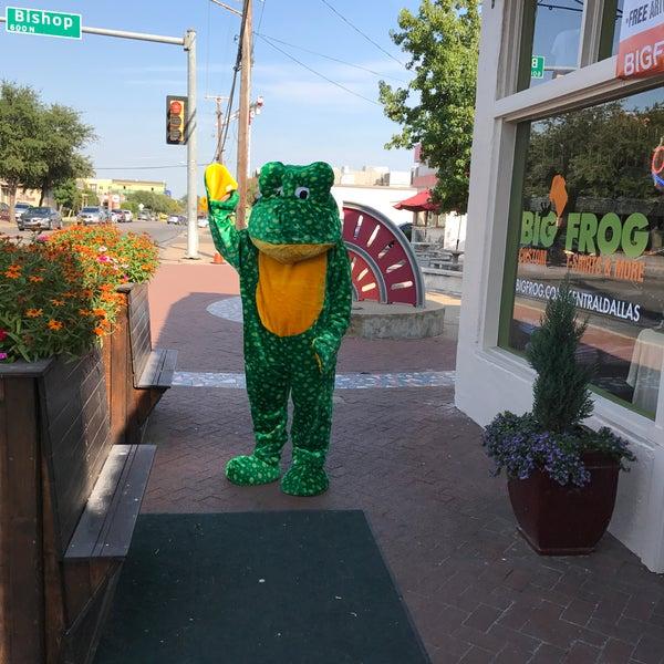 41e7b69b5 Big Frog Custom T-Shirts & More of Central Dallas - Bishop Arts District -  Dallas, TX