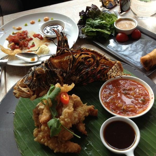 Excelente cocina, pez leon en el menu, deliciosa manera de contribuir a la conservacion de los arrecifes mexicanos
