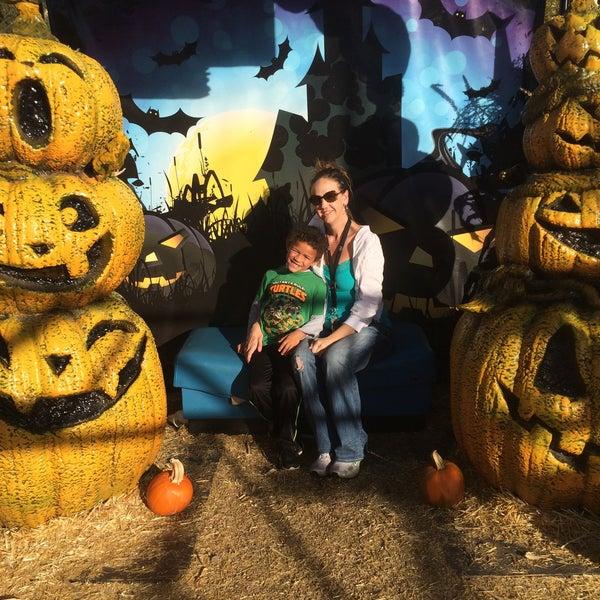 Foto tirada no(a) Nick's Garden Center & Farm Market por Lindsey S. em 10/25/2015