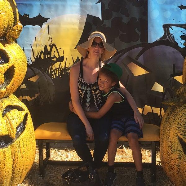 Foto tirada no(a) Nick's Garden Center & Farm Market por Lindsey S. em 10/15/2016