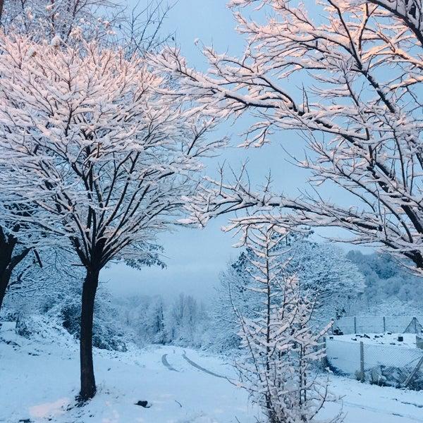 รูปภาพถ่ายที่ Cafer Usta Bolu Dağı Et Mangal โดย Yeşim Y. เมื่อ 1/1/2020