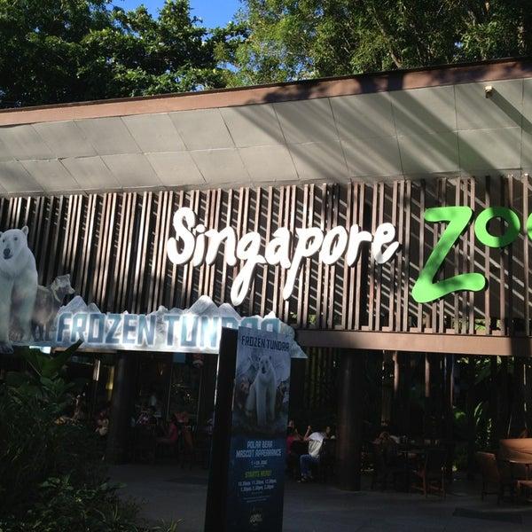 Foto tirada no(a) Singapore Zoo por Mariya M. em 6/11/2013