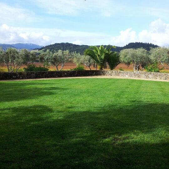 Снимок сделан в Regusci Winery пользователем Via K. 11/21/2012