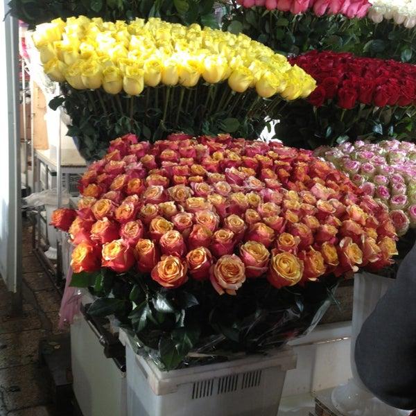 Луковицы, оптом цветы в город москва рижская