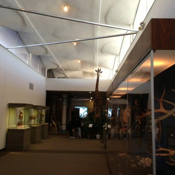 Foto tirada no(a) Las Vegas Natural History Museum por Jean O. em 2/15/2013