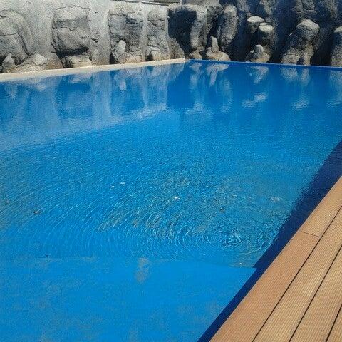 Das Foto wurde bei Antalya Aquarium von Emine Ö. am 5/16/2013 aufgenommen