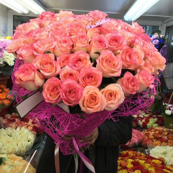 Комнатный, заказать цветов во владикавказ недорого