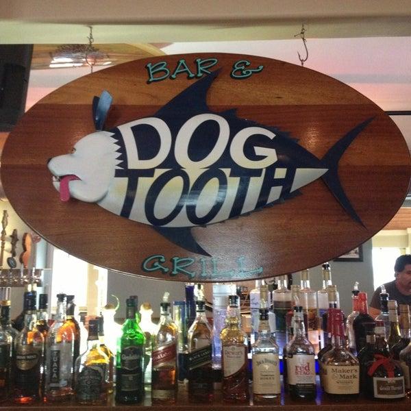 dog tooth wildwood