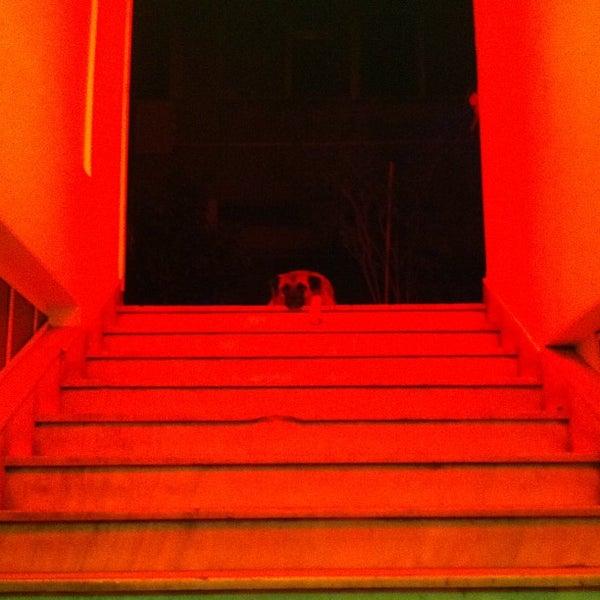 9/23/2012 tarihinde Christina D.ziyaretçi tarafından six d.o.g.s'de çekilen fotoğraf