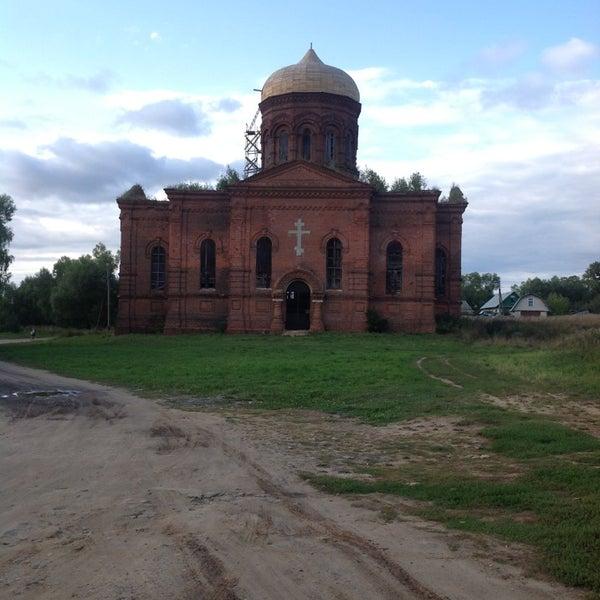 Гадюки в орловской области фото возникли