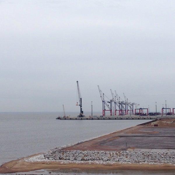 картинки фото намыва территории в порту бронка проводы пенсию