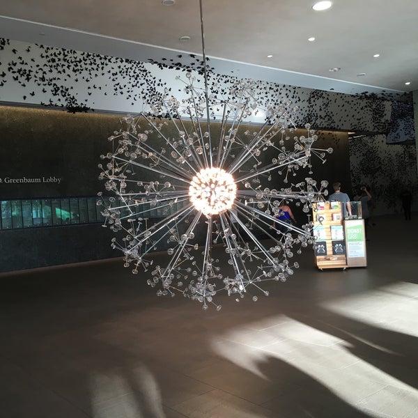Снимок сделан в Phoenix Art Museum пользователем Arisa M. 6/14/2018