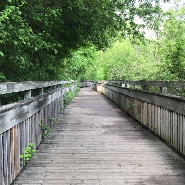 Arbor Park: Park In West Ann Arbor