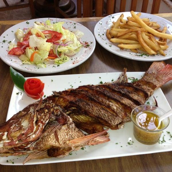 ¡Pregunta por la pesca del dia!... Pidelo frito o a la tikinxic, es una buena opcion para compartir :)