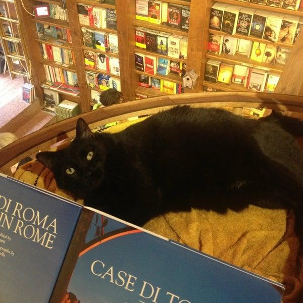Photos at Libreria Sovilla - Bookstore
