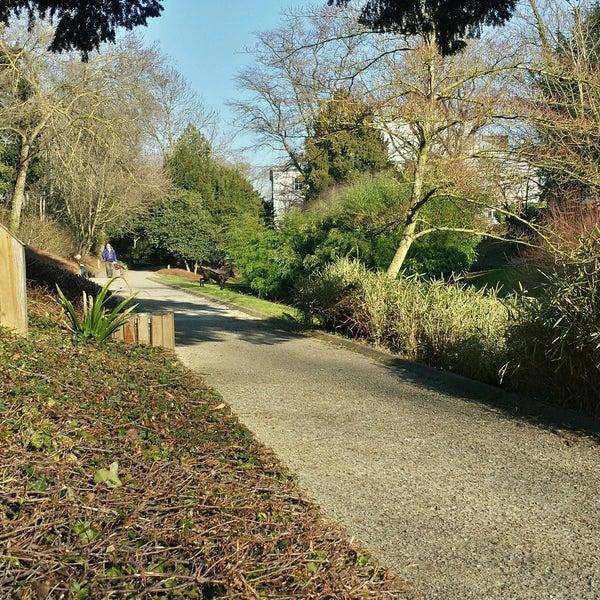 Jardin de la vall e suisse rue argence - Jardin de la vallee ...