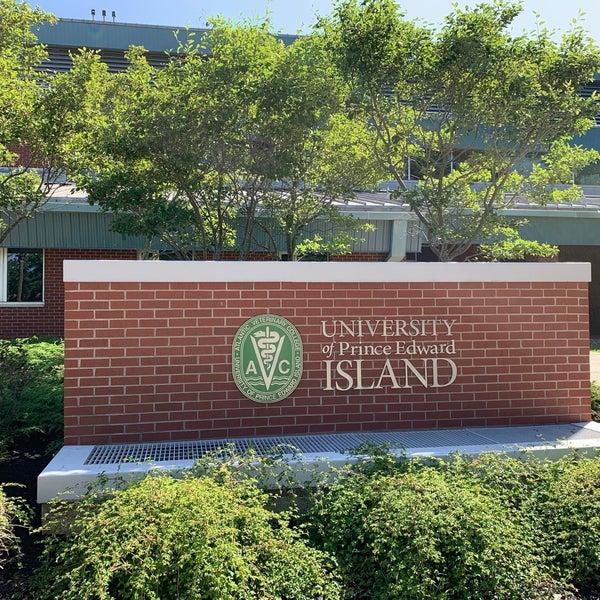 University Of Prince Edward Island >> Photos At University Of Prince Edward Island University