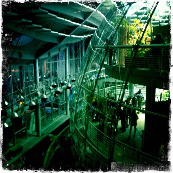 รูปภาพถ่ายที่ California Academy of Sciences โดย Sigward M. เมื่อ 5/3/2013