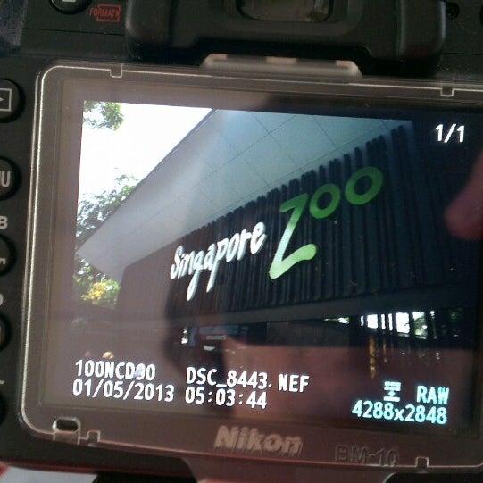 Foto tirada no(a) Singapore Zoo por Eugene G. em 5/1/2013