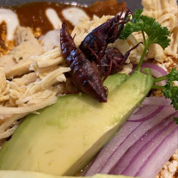 chilaquiles en salsa de chapulín