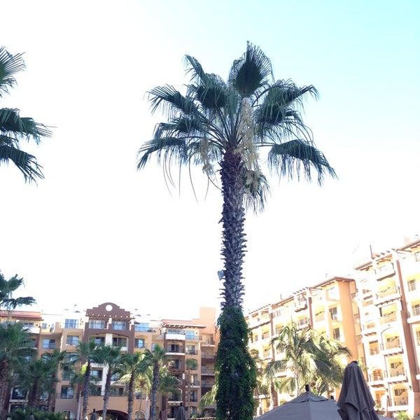 5/17/2014にChrisomar A.がVilla Del Arco Beach Resort & Spaで撮った写真