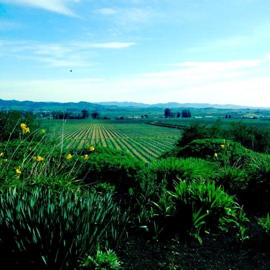 Das Foto wurde bei Gloria Ferrer Caves & Vineyards von noah a. am 2/26/2012 aufgenommen